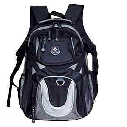 【葳爾登】long king休閒包登山包旅行袋,後背包,電腦包側背包露營包人體工學登山背包8722灰