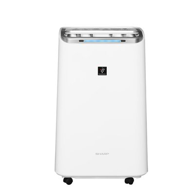 新竹仙風電器有限公司~SHARP夏普~10.5公升自動除菌離子HEPA清淨除濕機 DW-L10FT-W 來店享優惠