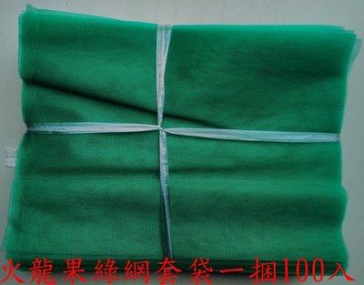 ※一束綠色火龍果專用網套袋100入/140元火龍果套袋紅龍果套袋紅龍果網套袋水果套袋蔬果套袋百香果套袋無花果套袋子網子
