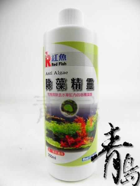 P。。。青島水族。。。台灣Red Fish紅魚---除藻精靈(強力推薦)==350ml(買2送1)