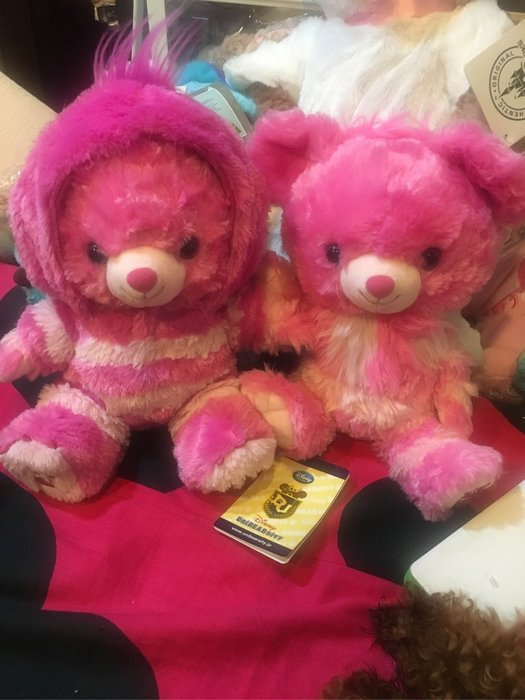 絕版 大學熊 妙妙貓 笑笑貓 娃娃 s號 另售 達菲 雪莉玫 Duffy 史黛拉兔