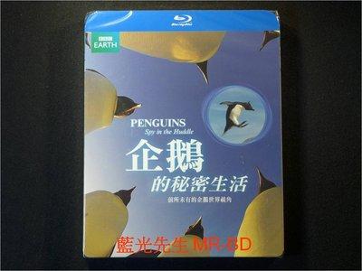 [藍光BD] - 企鵝的秘密生活 Penguins : Spy In The Huddle ( 得利公司貨 )