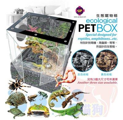 **貓狗大王**雅柏-----生態寵物箱----兩棲類寵物----M號(含抽水馬達)