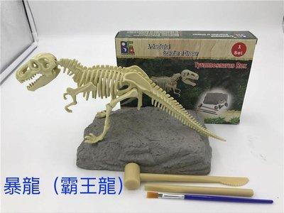 🔆SuperPlayer🔆考古恐龍骨架化石挖掘-暴龍霸王龍-玩具DIY組裝兒童手工創意模型