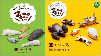 日版 代理 T-ARTS 扭蛋 ZOO 休眠動物  P1.P2 大全12款