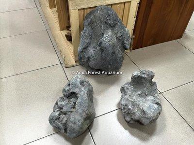 ◎ 水族之森 ◎ Aqua Forest Aquarium  嚴選 八海石  石組(90H~120P適用) 限量登場