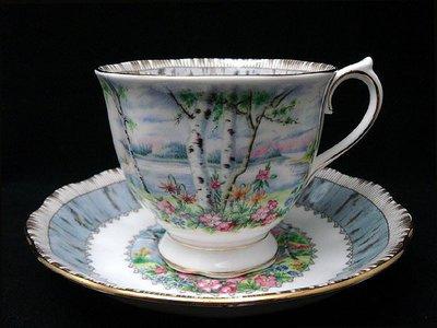 【timekeeper】  英國Royal Albert皇家亞伯特Silver Birch銀色樺樹骨瓷咖啡杯+盤(免運)