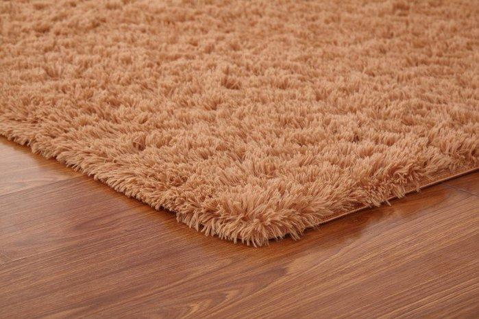 DT-79 現貨 可水洗不掉色絨毛地毯客廳臥室茶幾地毯床邊飄窗地毯 極有家
