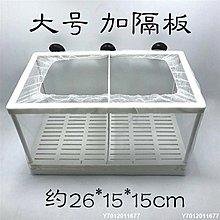 【可開發票】[上新]隔離盒熱帶魚水族箱魚缸孵化繁殖魚網器網箱產盒孵魚槽箱