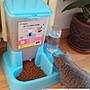 貓咪用品貓碗雙碗自動飲水狗碗自動喂食器寵...