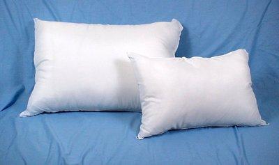 枕頭.枕心一對(2入$200元)特價促銷.數量有限.台灣製~現買現賺