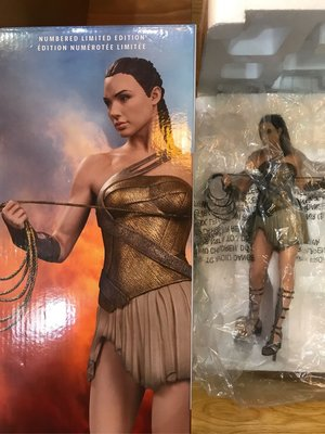 DC Collectibles DX12 Wonder WomanTraining Armor Ver. Figure 正義聯盟 神奇女俠 訓練裝 石像