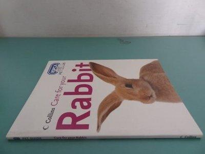 典藏乾坤&書---寵物---CARE FOR YOUR RABBIT COLLINS ISBN0-00-718270-8 L