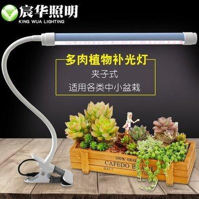 『9527五金』LED植物補光燈全光譜生長燈花卉綠植多肉盆景桌面夾子補光燈10W含調光開關