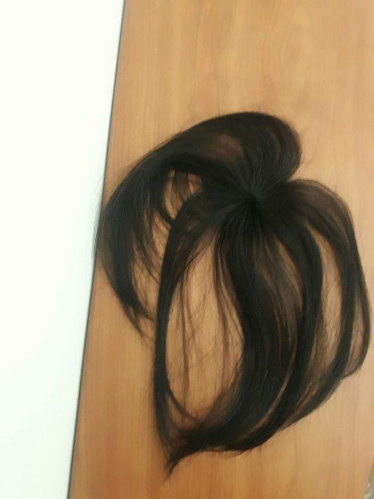 真髮22公分 小髮片