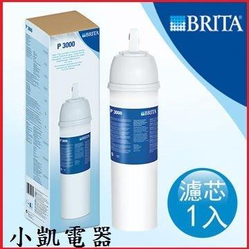 『 小 凱 電 器 』「公司貨」德國 BRITA On Line P3000 硬水軟化型濾芯 【兩入】《免運》
