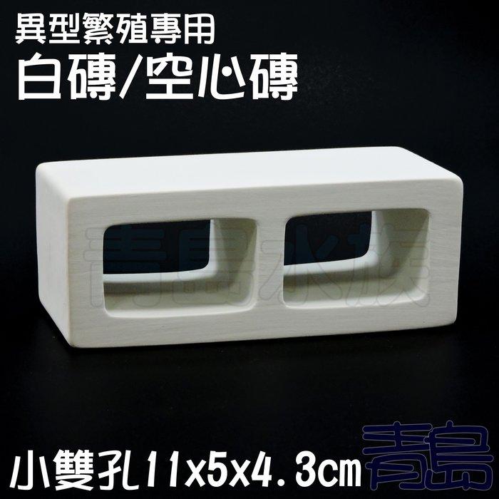 ME。。。青島水族。。。TW1001-2W白色力量-異型繁殖專用白磚 空心磚 小白宮 異形甕 短鯛鼠魚躲藏裝飾==小雙孔