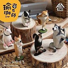 朝隈俊男 Animal Life 狗瑜珈大師 大全套 一套六款賣