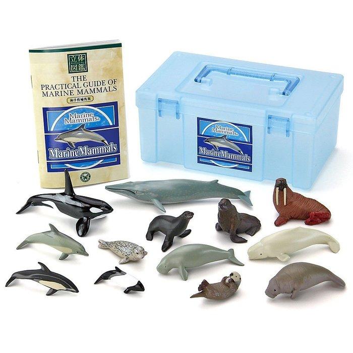 沖繩 海洋博公園 美麗海水族館 海洋性哺乳類 海豚 虎鯨 海獺 立體圖鑑 紀念 日本空運#5534~小太陽日本精品