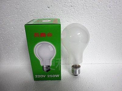 220V 250W鎢絲燈泡 特殊電球 長壽命 單顆賣-【便利網】 桃園市