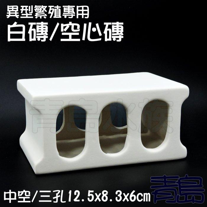 Y。。。青島水族。。。JF1215-W白色力量-異型繁殖專用白磚 空心磚 小白宮 異形甕 短鯛鼠魚躲藏裝飾==中空/三孔