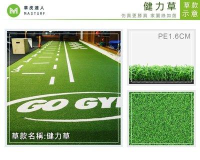 2018年新款【草皮達人】 健力草 人工草皮PE1.6cm雙色捲草 每平方公尺700元(價格已含稅,量大可議) 運動草