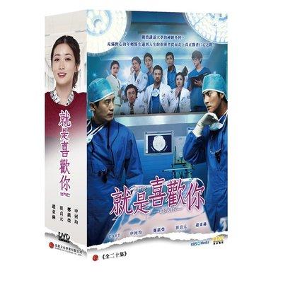就是喜歡你DVD (全20集/6片/雙語) 申河均/崔貞媛/趙東赫-全新正版弘恩韓劇