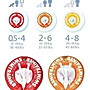 【小糖雜貨舖】德國 Swimtrainer Classic 學習游泳圈 紅色 寶寶游泳 公司貨 超取 寶寶游泳圈界的LV
