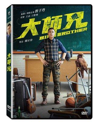 合友唱片 面交 自取 大師兄 Big Brother DVD