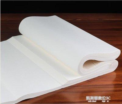 宣紙半生半熟宣紙100張書法專用紙作品紙國畫工筆畫初學者專用生宣紙熟宣紙