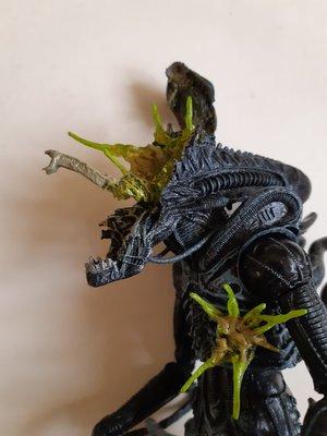 開封品正版 Neca Alien 爆破版
