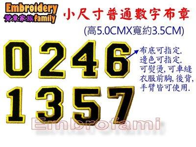 ※embrofami客製※高4.0和5.0CM小尺寸數字字母布章訂做DIY數字球衣背號(10片普通布同色)