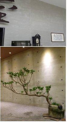 樂土灰泥清水灰(仿清水模)1kg~後製水泥質感/工業風牆面~~(非壁紙)