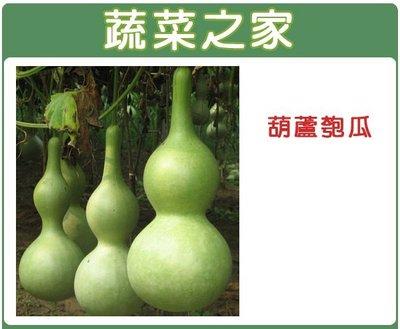 全館滿799免運【蔬菜之家00G32】...