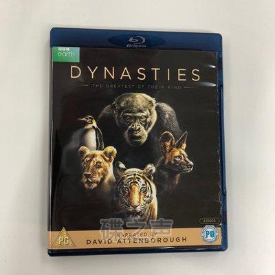 BBC大型紀錄片 王朝Dynasties原版dts7.1藍光碟BD高清1080P收藏版