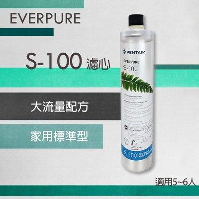 美國 愛惠浦 EVERPURE S100 濾心 平行輸入品 家用標準型 大流量配方 愛惠普 S-100 濾芯 濱特爾