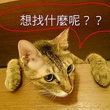 貓貓の飯,貓貓の保健品代購區