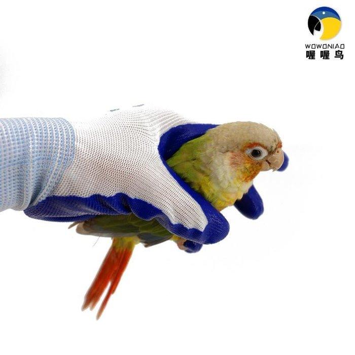防咬手套 寵物手套 保護手指