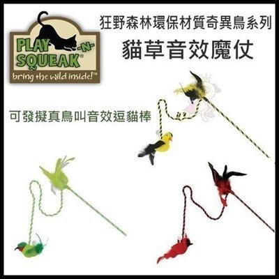 *白喵小舗*Play-N-Squeak狂野森林環保材質奇異鳥系列貓草音效魔仗/可發擬真鳥叫音效逗貓棒