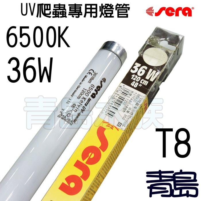 五1中0 ↓↓庫存品C。。。青島水族。。。S6930德國Sera喜瑞----UV爬蟲專用燈管6500K==36W