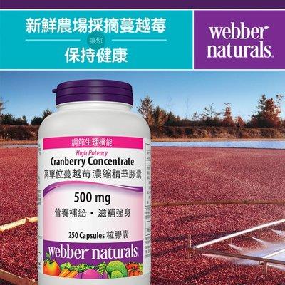 !costco代購 #994336 Webber Naturals 蔓越莓濃縮精華膠囊 250粒*
