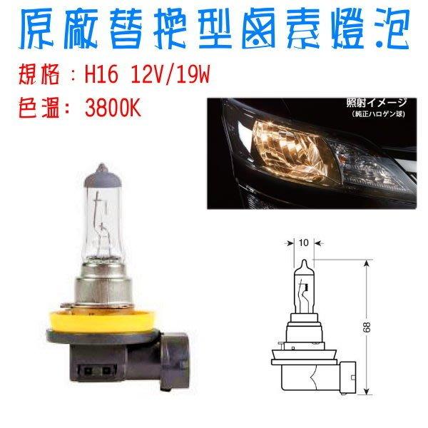 和霆車部品中和館— 生產 外銷 H16 12V 19W  型鹵素燈泡
