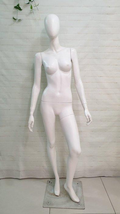 二手人抬女模特兒 女麻豆 全身假人模特兒有頭 AT-61L 服飾展示網拍直播 穿褲裝好看 賺錢工具 限新莊面交自取