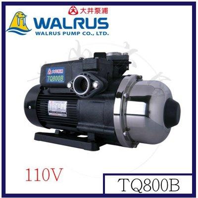 『青山六金』附發票 大井泵浦 電子穩壓加壓馬達 TQ800B 110V 公寓住宅給水系統 1HP 低噪音 自動供水系統
