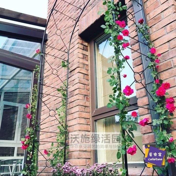 爬藤架 新品寬1.1米歐式鐵藝拱門花架爬藤架庭院戶外花園藤本月季支
