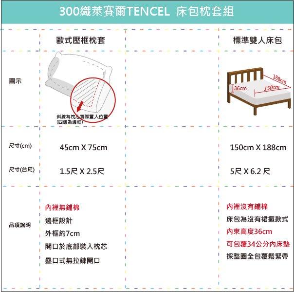 【OLIVIA 】DR1020 Alma 白  標準雙人床包枕套三件組 紫色繡線 300織天絲™萊賽爾  台灣製