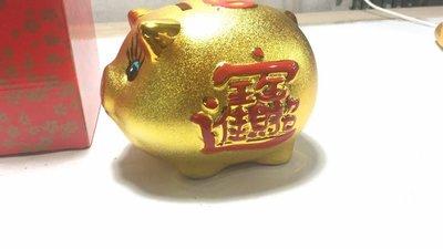 小乖乖123Papi 館 陶瓷 開業擺件 招財進寶 18cm10吋寸金豬存錢筒 陶瓷豬撲滿 小豬撲滿 桶