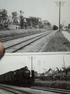 190430~疑似是CT184阿里山小火車頭~相關特殊(一律免運費---只有各一張)老照片~05