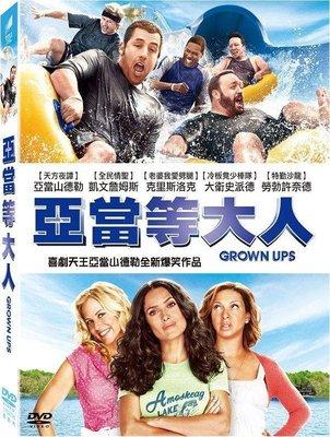 (全新未拆封)亞當等大人 Grown Ups DVD(得利公司貨)