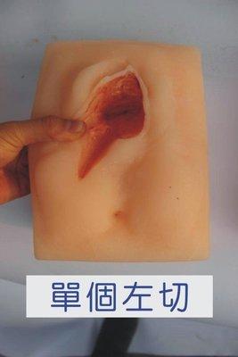 【奇滿來】(單個左切)高級外陰縫合練習模型 會陰切口縫合練習模型 外陰切開縫合模型 醫學教學教具AREN